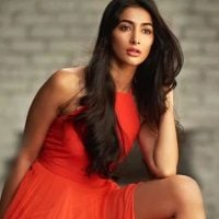 Pooja Hegde Being Made Fun of Big Time for Best Debut Award Bollywood